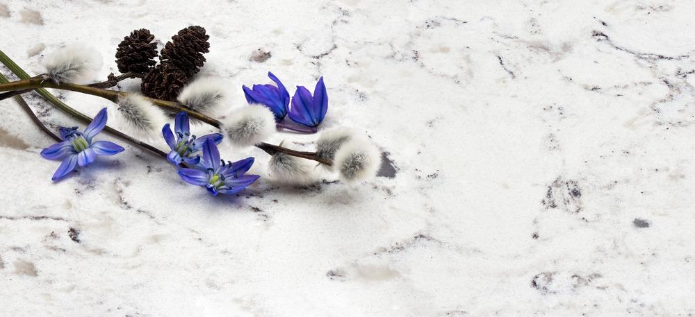 Spring blue wild flowers Scilla, willow and adler branches on Delta White quartz kitchen worktop