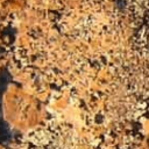 Juperana Florence Granite