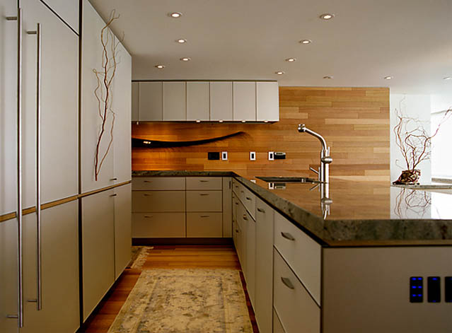 sleek granite counters